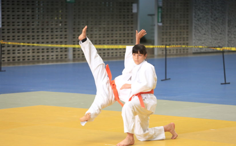 Programación Baby Judo 2020